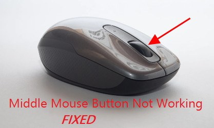 Mouse Wheel not Scrolling